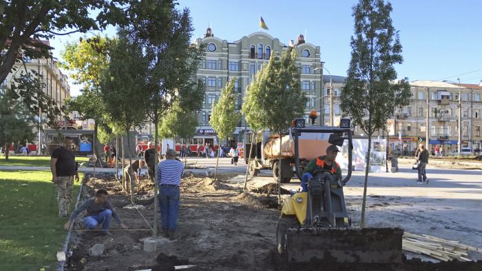 Посадка дерев та укладання основи під гравійну відсипку / Відновлення скверу №3 на Контрактовій площі