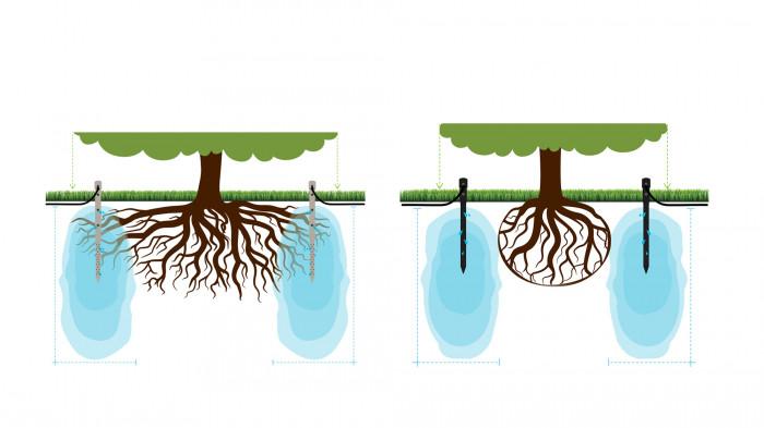Організація поливу існуючих та проектних дерев / «Нова Контрактова»