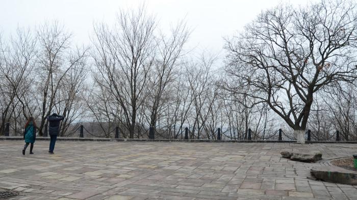 Панорамні види поросли самосівом / Відновлення Старокиївської гори