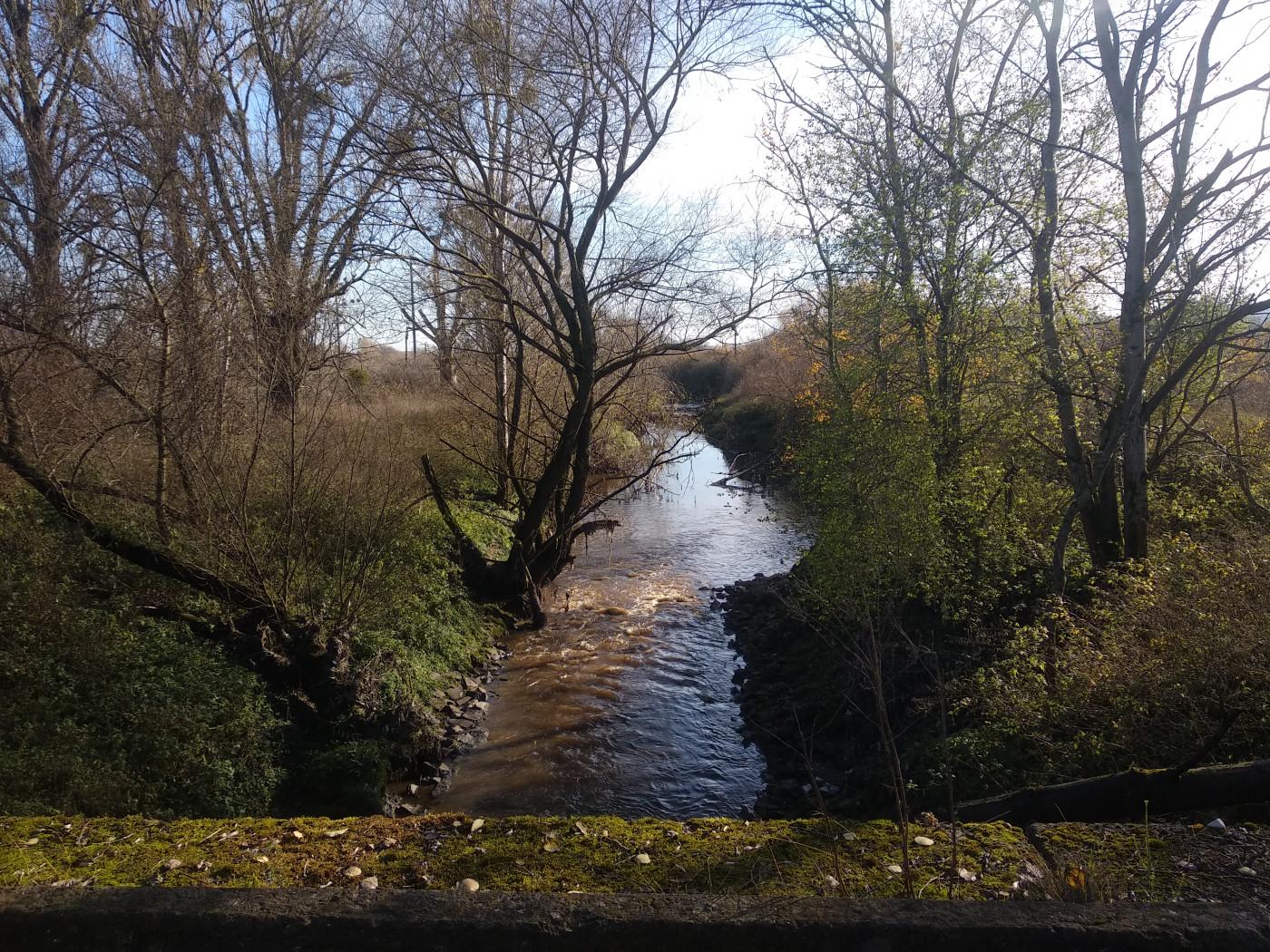 Витік річки Полтви після очисних споруд